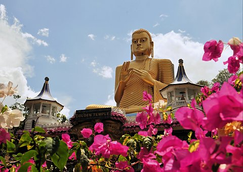171611_Sri-Lanka-Buddha-Statue-Blumen-iStock-40693248